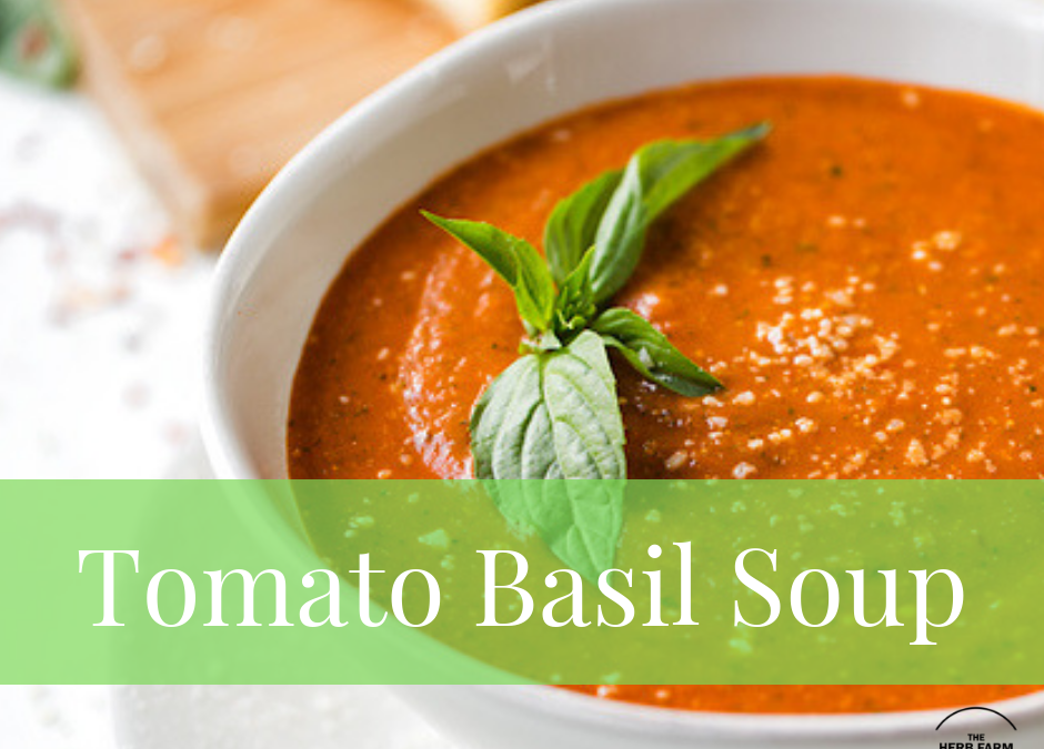 Let's Cook Tomato Basil Soup