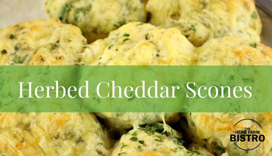Let's bake… Herbed Cheddar Scones