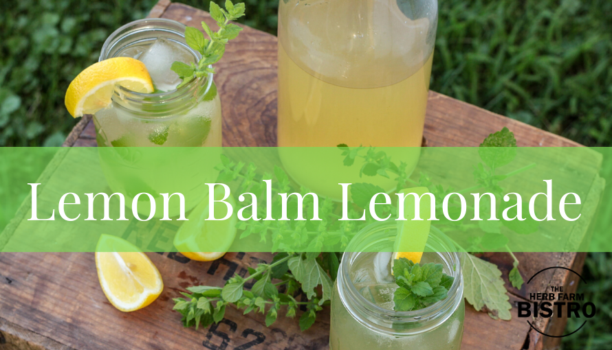 Let's drink… Lemon Balm Lemonade